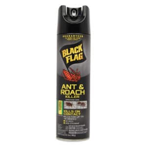insect repellent diversion safe