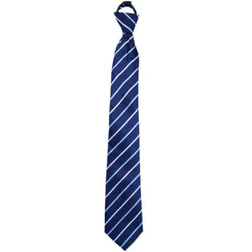 blue striped neck tie hidden cameral with built in dvr