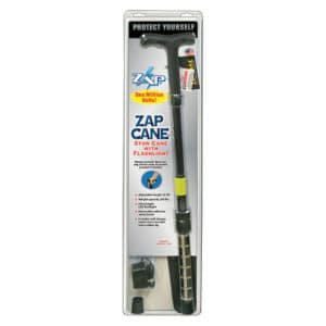 stun gun zap with flashlight standing
